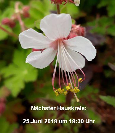 Hauskreis am 25.6.2019 um 19:30 Uhr